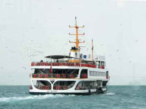 white-ship-traveling-through-vast-body-of-water-with-white-birds-flying-beside-879479-pixel-photo.jpeg